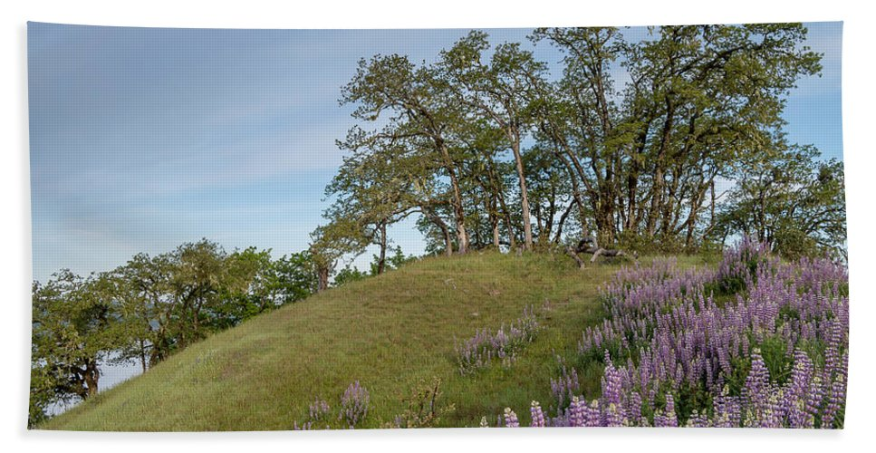 Lupine Bath Sheet featuring the photograph Trail Of Lupine by Greg Nyquist