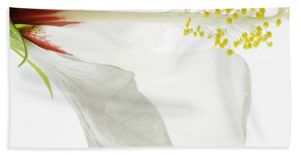 Hibiscus Hand Towel featuring the photograph Transparent Hibiscus by James Ekstrom