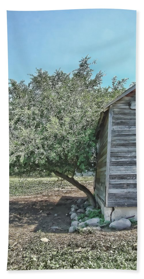 Tree Hand Towel featuring the photograph Tree And Building by Cathy Anderson