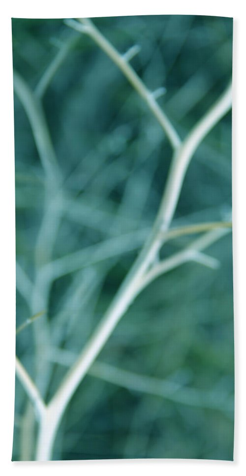Tree Hand Towel featuring the photograph Tree Branches Abstract Teal by Jennie Marie Schell
