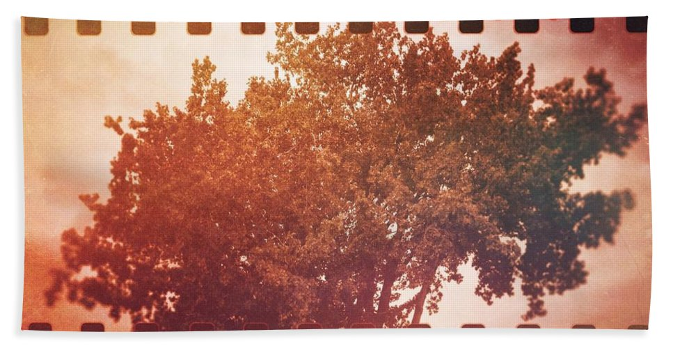 Vermont Hand Towel featuring the photograph Tree Grunge Vintage Analog Film by Andy Gimino