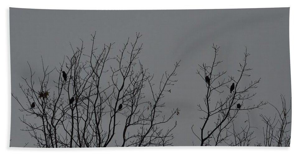 Birds Hand Towel featuring the photograph Tree Of Birds by Sonali Gangane