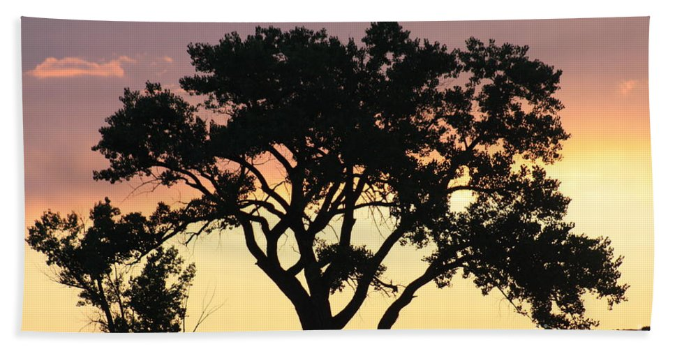 Tree Hand Towel featuring the photograph Tree Of Life by Brandi Maher