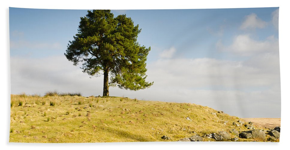 Countryside Bath Sheet featuring the photograph Tree On A Hill by David Head