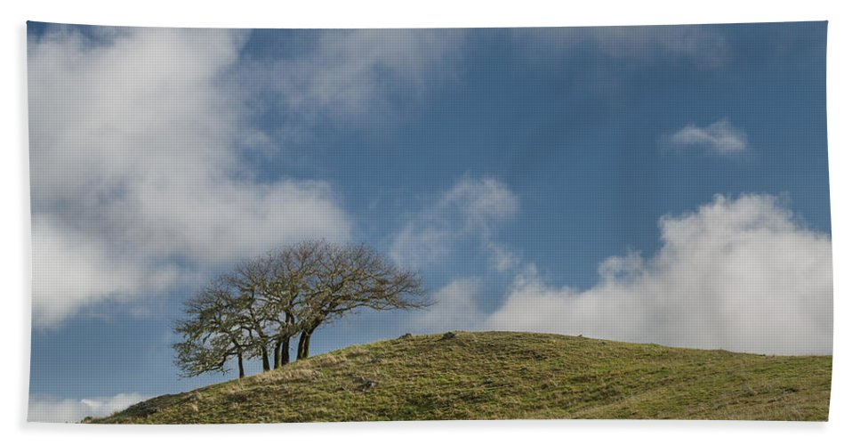Green Hand Towel featuring the photograph Tree On A Hill by Greg Nyquist