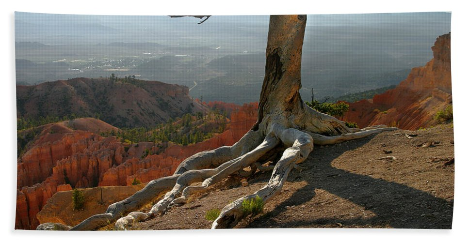 Art Bath Sheet featuring the photograph Tree On A Ridge In Bryce Canyon by Randall Nyhof