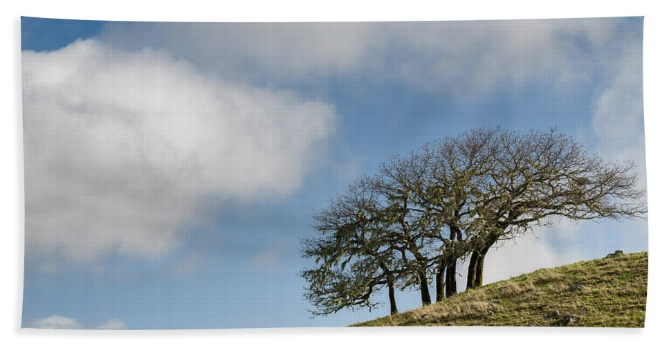 Humboldt Hills Hand Towel featuring the photograph Tree On Hillside by Greg Nyquist