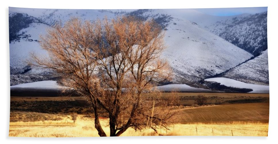 Idaho Hand Towel featuring the photograph Tree On The Farm by Image Takers Photography LLC - Laura Morgan