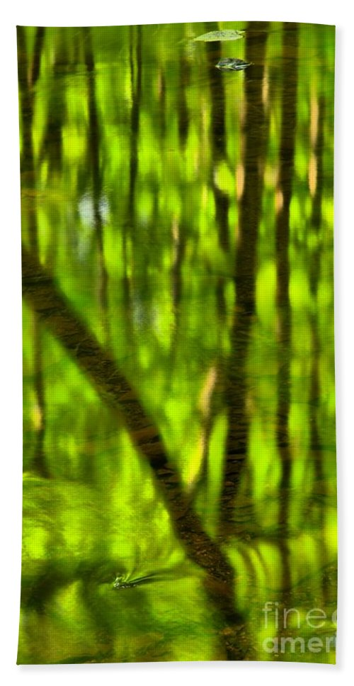 Tree Reflections Hand Towel featuring the photograph Tree Reflections by Adam Jewell