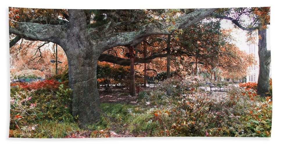Trees Hand Towel featuring the photograph Tree Series 46 by Carlos Diaz