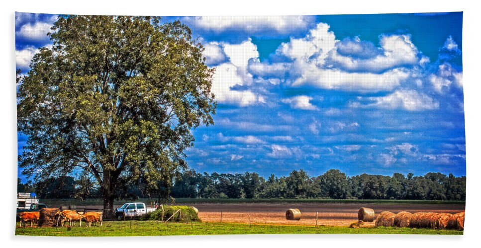 Landscape Bath Sheet featuring the photograph Tree Stands Alone- Vibrant Colors by Jon Cody