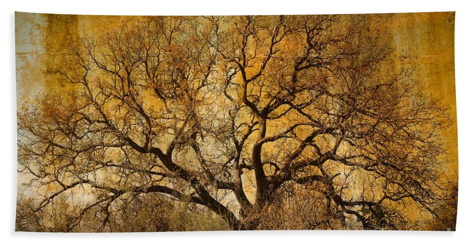 Tree Bath Sheet featuring the photograph Tree Without Shade by Gary Richards