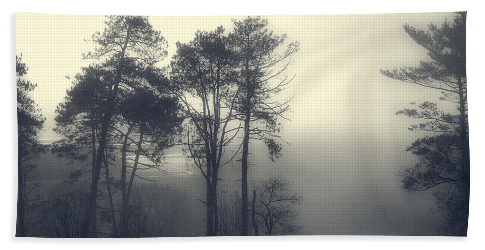Trees Bath Sheet featuring the photograph Trees And Fog At Castle Hill by David Stone