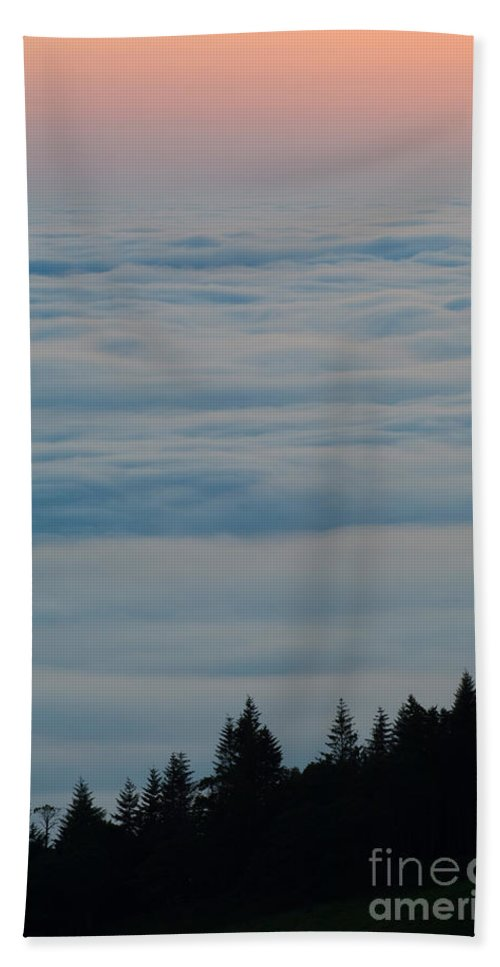 Fog Bath Sheet featuring the photograph Trees And Fog by John Shaw