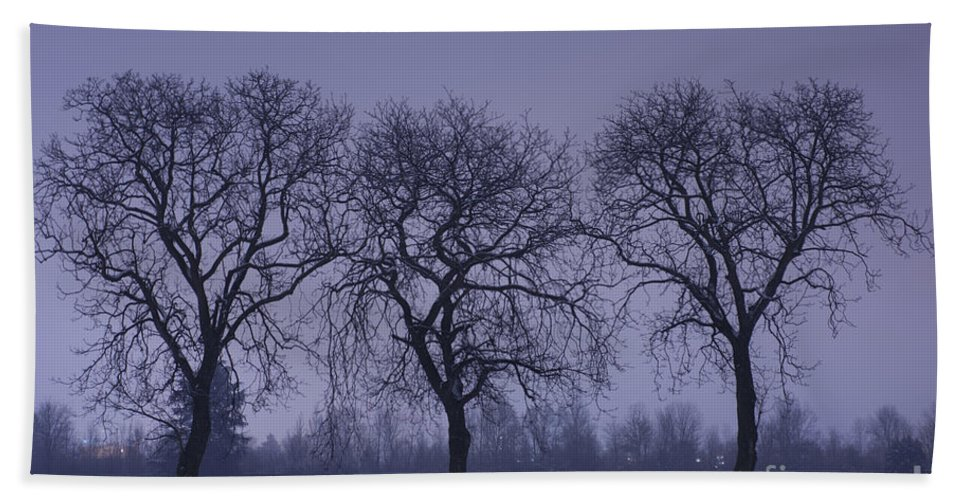 Winter Hand Towel featuring the photograph Trees At Night by Mats Silvan