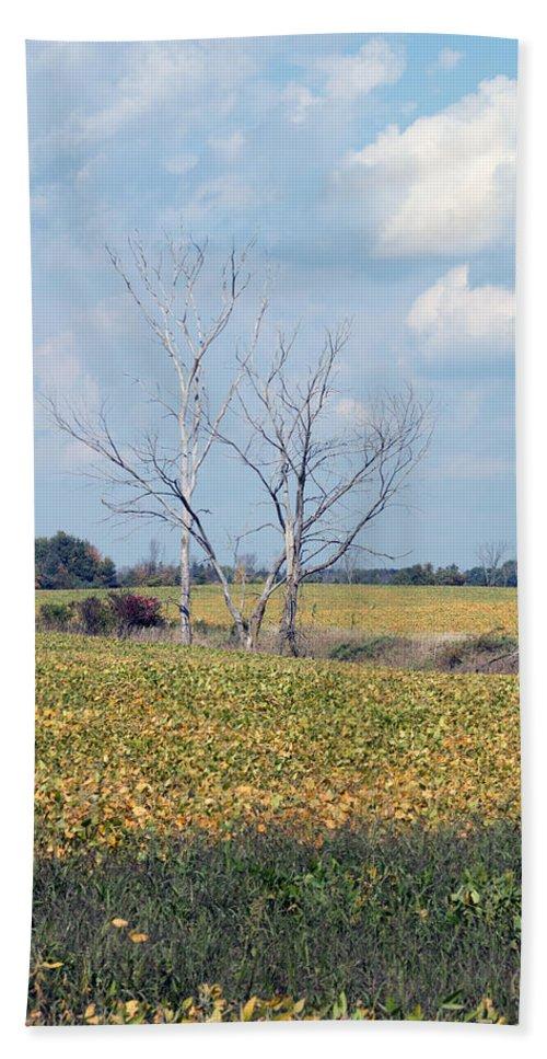 Sky Bath Sheet featuring the photograph Trees In Field by Linda Kerkau