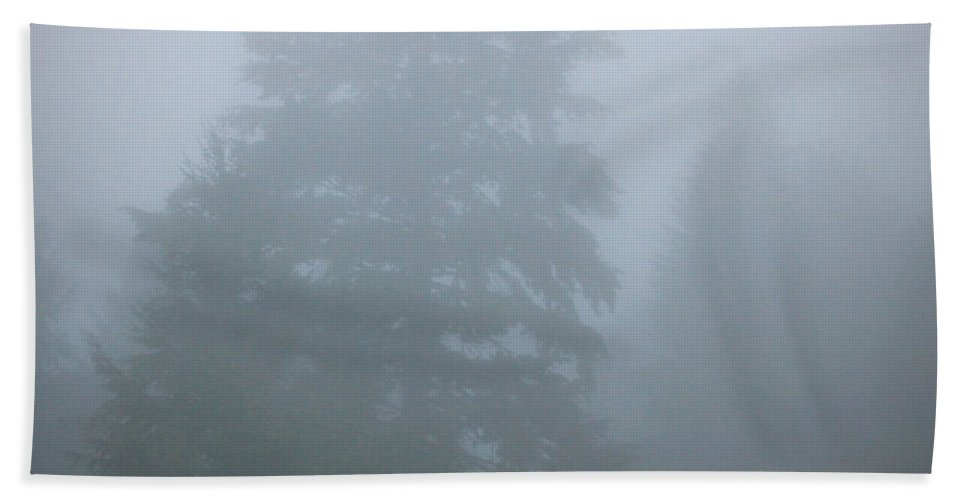 Oregon Hand Towel featuring the photograph Trees In Fog by Katie Wing Vigil