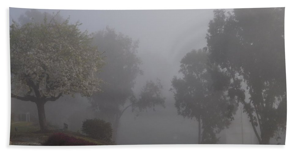 Fog Bath Sheet featuring the photograph Trees In The Mist by Jussta Jussta