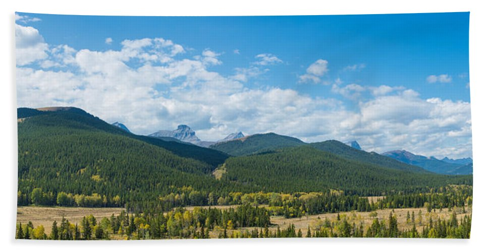 Photography Hand Towel featuring the photograph Trees On Canadian Rockies Along Route by Panoramic Images