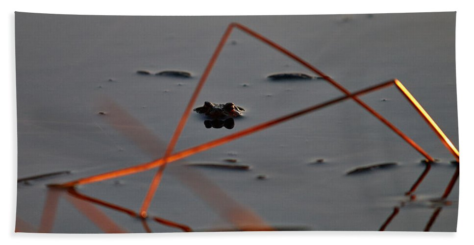 Finland Bath Sheet featuring the photograph Triangle Drama by Jouko Lehto