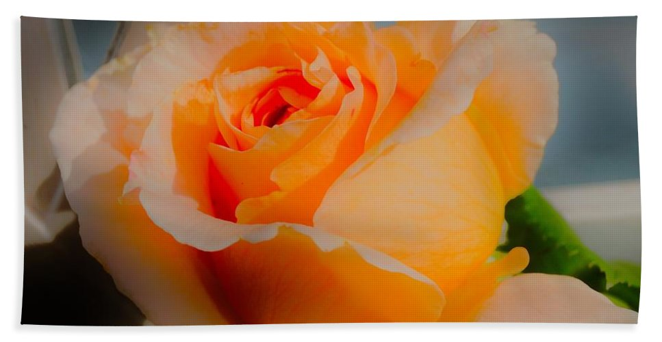 Rose Hand Towel featuring the photograph Tricia's Rose 8.6.14 by Daniel Thompson