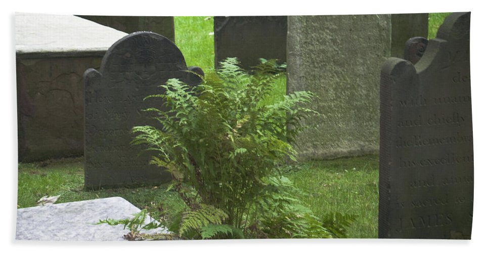 Trinity Church Bath Sheet featuring the photograph Trinity Fern Squared by Teresa Mucha