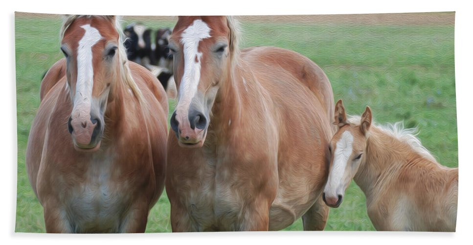 Horses Hand Towel featuring the photograph Trio Of Horses 2 by Tracy Winter