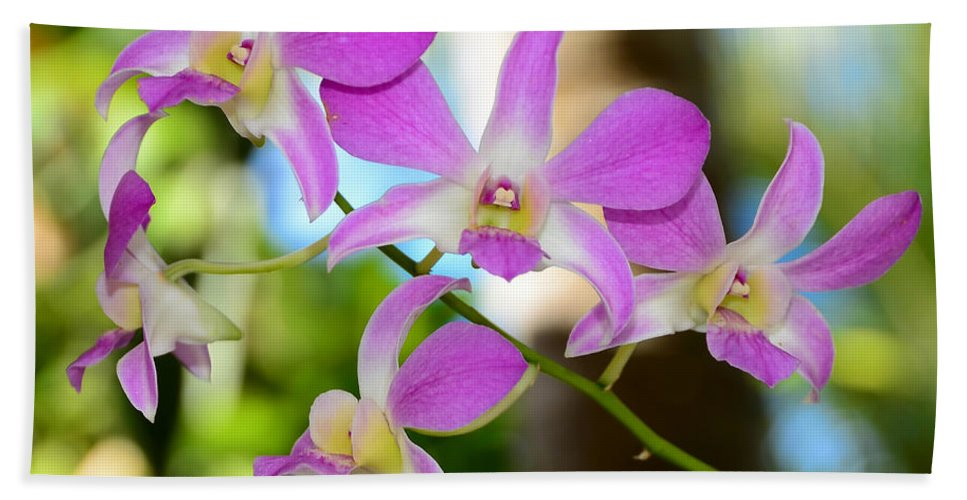 Fine Art Photography Hand Towel featuring the photograph Tropical Beauty by David Lee Thompson