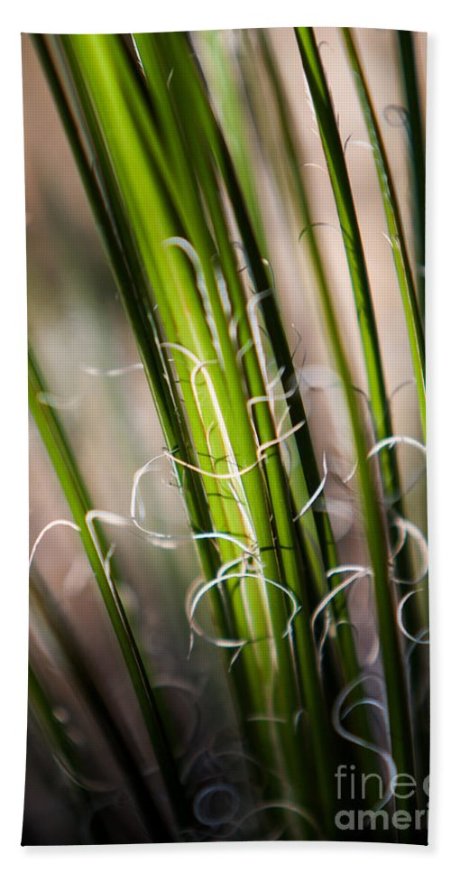 Botanical Hand Towel featuring the photograph Tropical Grass by John Wadleigh