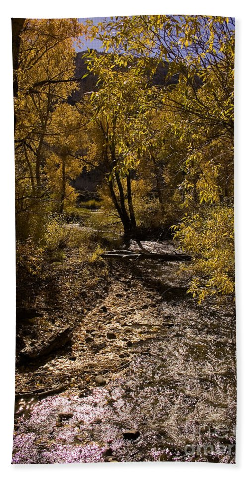 Fall Colors Bath Sheet featuring the photograph Trout Creek by J L Woody Wooden