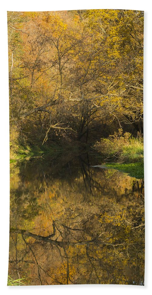 Water Bath Sheet featuring the photograph Trout Run Creek Fall 2 by John Brueske