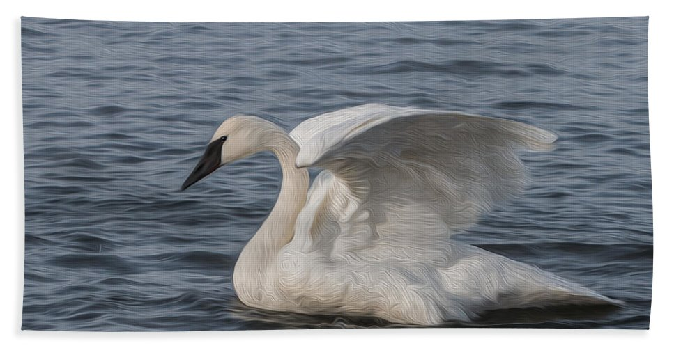 White Bath Sheet featuring the photograph Trumpeter Swan - Profile by Patti Deters
