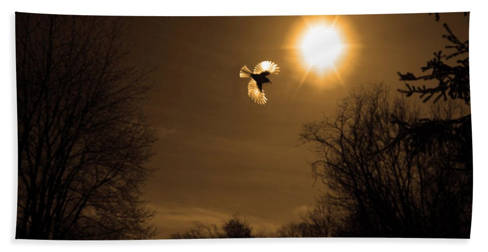 Birds Hand Towel featuring the photograph Tufted Titmouse by Bob Geary