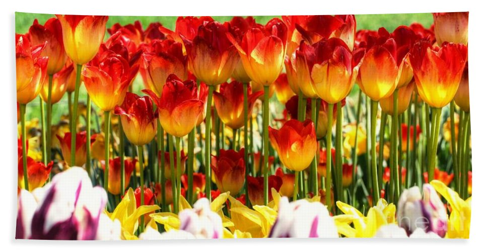 Tulip Bath Sheet featuring the photograph Tulip Stand In Mount Vernon Washington by Tap On Photo
