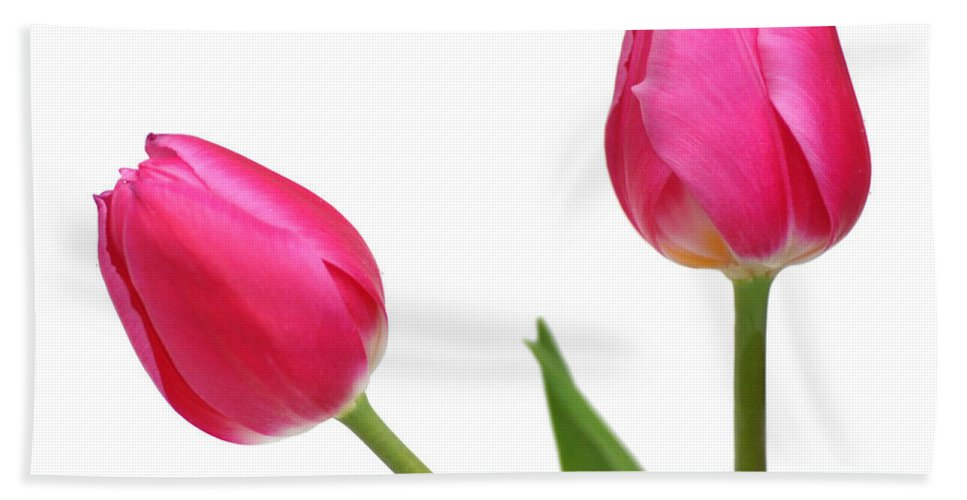 Arrangement Hand Towel featuring the photograph Tulips by TouTouke A Y