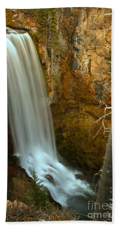 Hand Towel featuring the photograph Tumalo And The Tree by Adam Jewell
