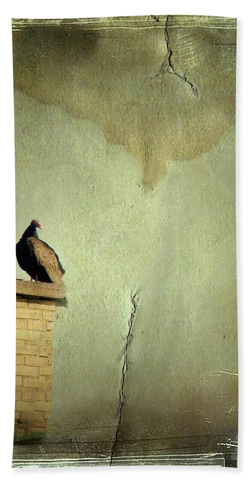 Turkey Vulture Hand Towel featuring the photograph Turkey Vulture by Gothicrow Images