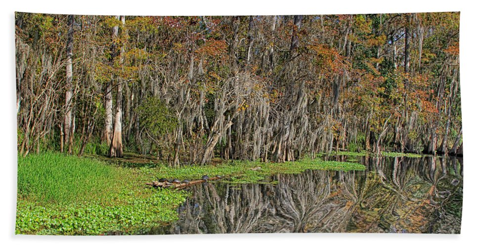 Nature Hand Towel featuring the photograph Turtle Haven by Deborah Benoit