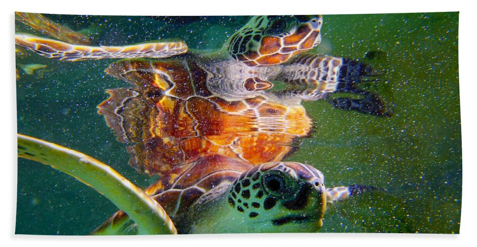 Turtle Bath Sheet featuring the photograph Turtle Reflection by Carey Chen
