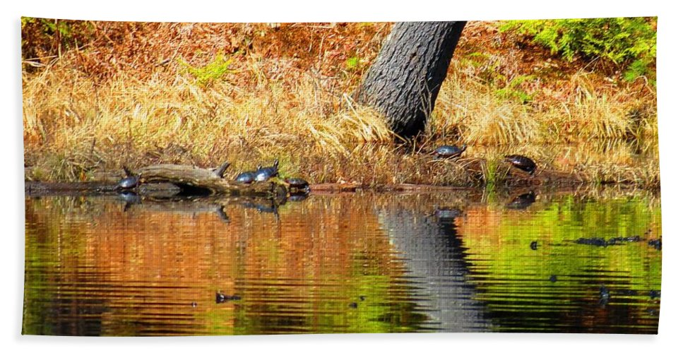 Turtles Hand Towel featuring the photograph Turtles At The Edge by MTBobbins Photography