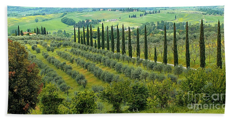 Tuscan Bath Sheet featuring the photograph Tuscan Panoramic 3 by Mike Nellums