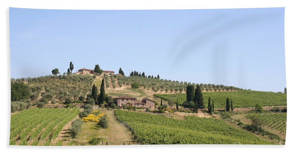 Vineyard Hand Towel featuring the photograph Tuscany Vineyard by Christiane Schulze Art And Photography