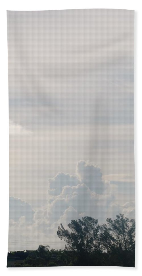 Trees Bath Sheet featuring the photograph Twin Pines by Rob Hans