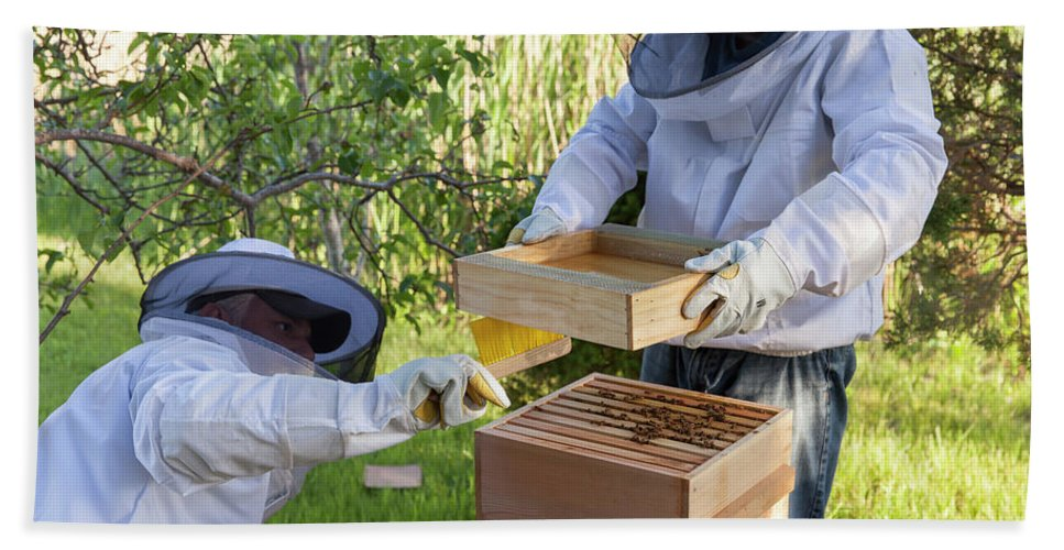 Brush Hand Towel featuring the photograph Two Beekeepers Removing The Feeder Tray by Lucie Wicker