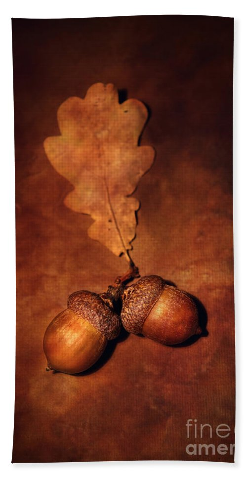 Still Life Hand Towel featuring the photograph Two Brown Acorns by Jaroslaw Blaminsky