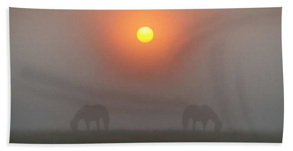 Two Hand Towel featuring the photograph Two Horses In The Foggy Sun by Bill Cannon