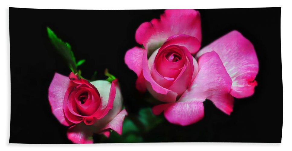 Roses Hand Towel featuring the photograph Two In Pink by Diana Angstadt