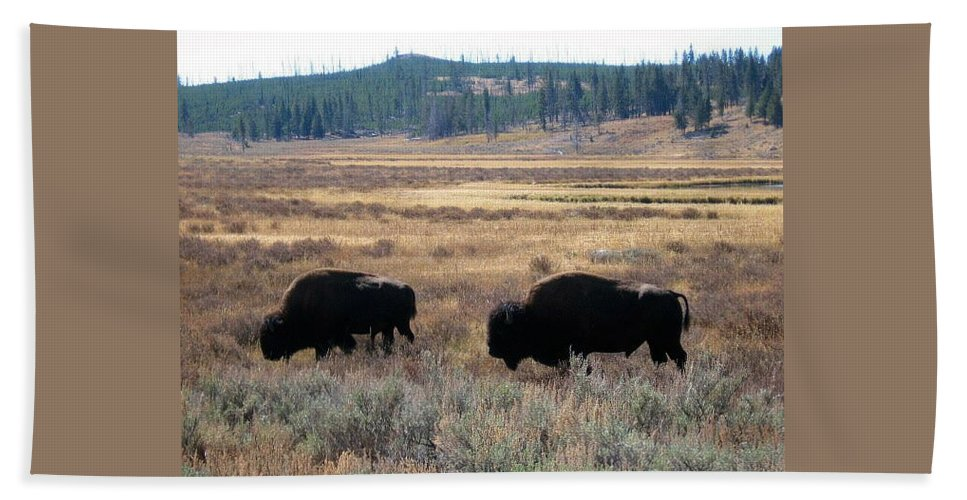 Buffalo Bath Sheet featuring the photograph Two Of A Kind by Kristina Deane