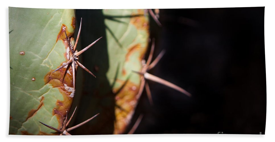 Botanical Hand Towel featuring the photograph Two Shades Of Cactus by John Wadleigh