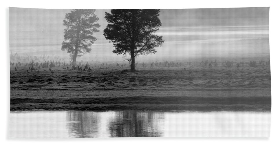 Fog Hand Towel featuring the photograph Two Trees by Claudia Kuhn